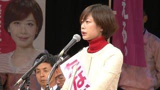 たなか美絵子総決起大会「たなか絵美子 候補」挨拶 田中美絵子 検索動画 9