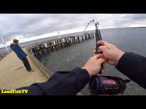 Western Port Bay Monster - Fishing