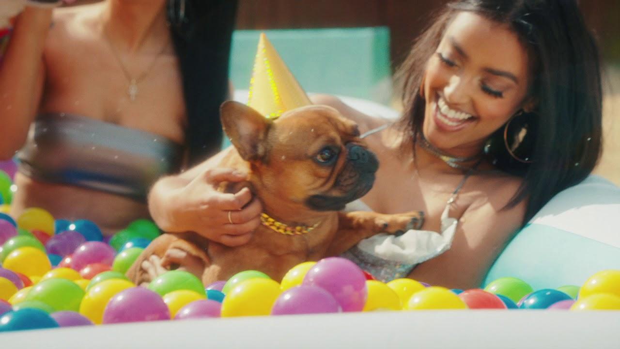 "T-Pain - ""It's My Dog Birthday"""
