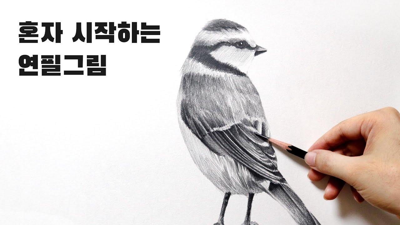 혼자 시작하는 연필소묘 / 새 드로잉, 깃털 표현방법
