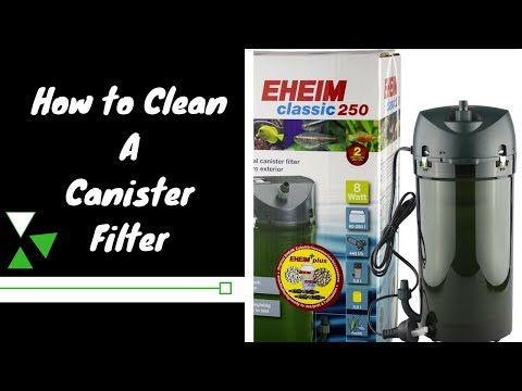 How To Clean an Eheim 250 classic Canister filter