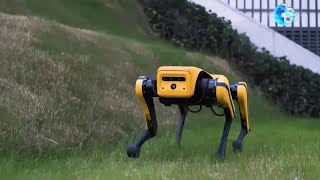 GLOBALink | Chinese researchers unveil upgraded four-legged robot