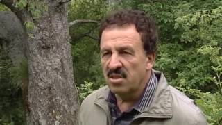 FSHATI STRIM EMISION DOKUMENTAR