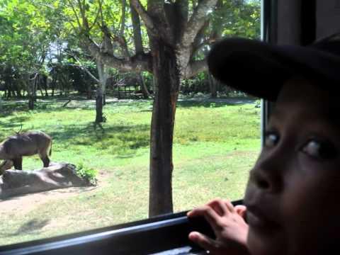 Bali muslim tourist guide