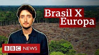 o-que-mito-e-o-que-verdade-sobre-o-desmatamento-no-brasil-e-na-europa