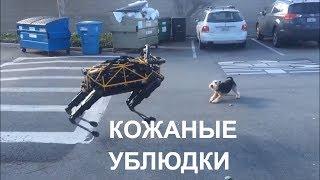 Основная информация Перевод Расширенные настройки    ⚡Boston Dynamics русская озвучка 5 😁😁😁