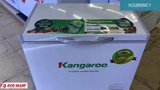 Tủ đông Kangaroo 265L KG265NC1