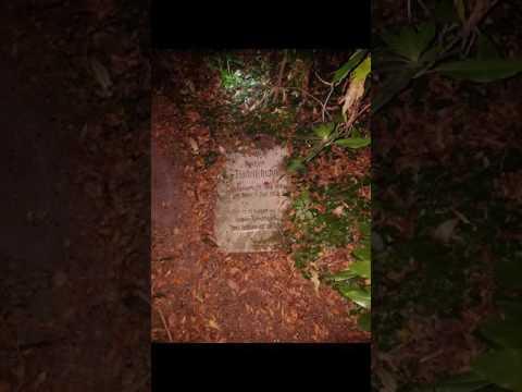 Friedhof - Lost Place Bergkamen
