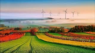 가을 풍경 보면서 음악 들으세요