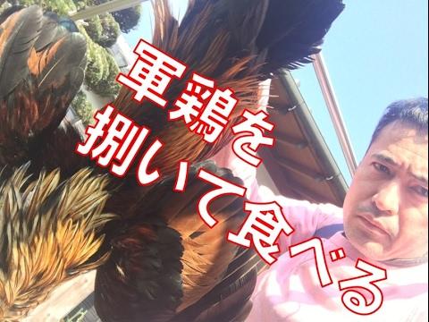 【心臓が弱い方は観ないで】軍鶏(シャモ)の捌きから食べるまで (熊本県球磨郡) 出版しました。心臓を直視する衝撃動画URLをコピペ➡https://youtu.be/TT7x3cPuQrw