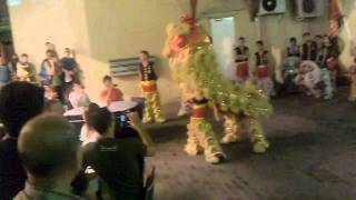 Lion Dance in Chung Wah Lane China Town Perth 2011