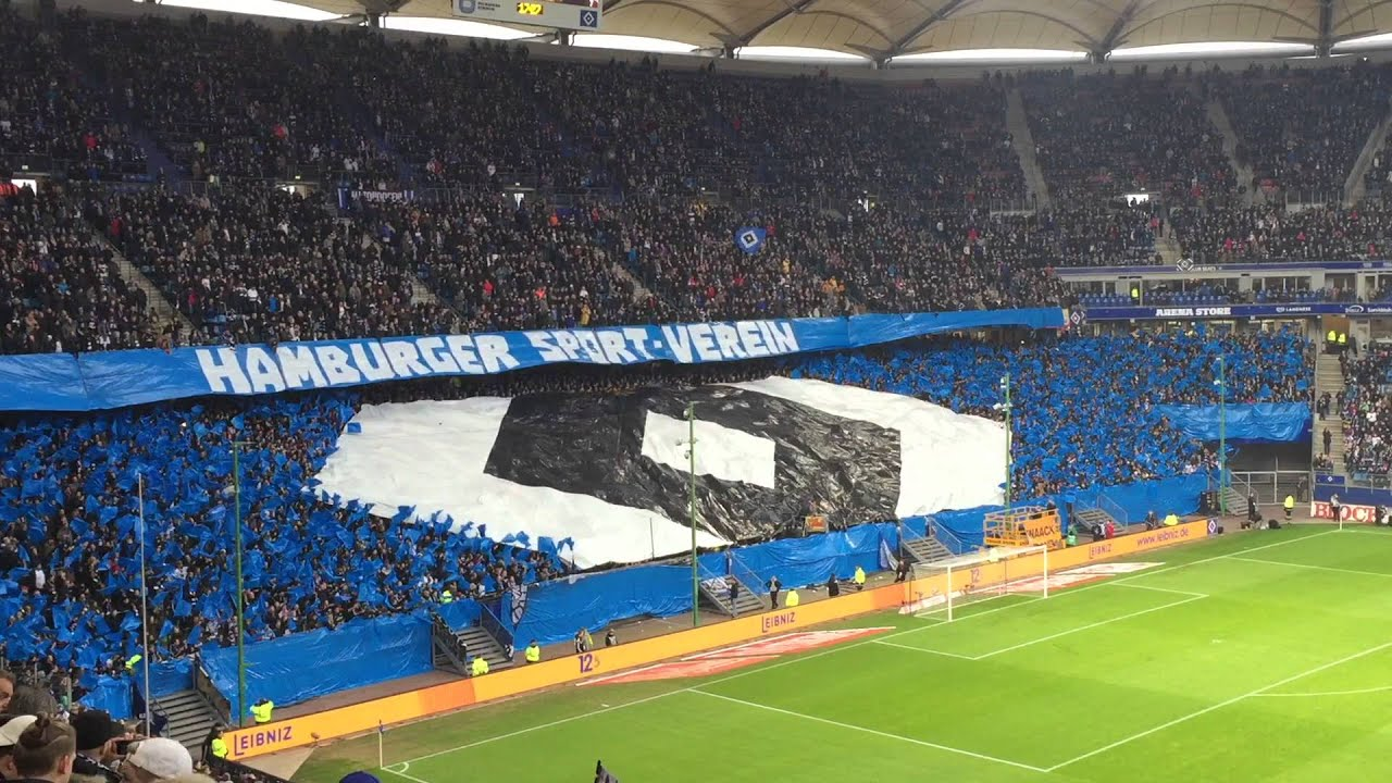 hsv hertha bsc