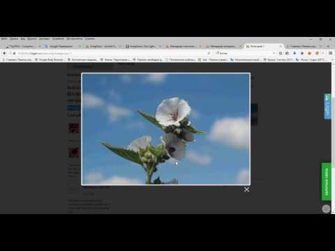 ImageSizer  показ изображений в Lightbox окне по умолчанию для Joomla! + галерея