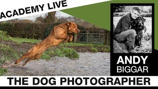 ACADEMY LIVE | Andy Biggar - The Dog Photographer