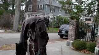 Sidewalker -- four legged stilt costume