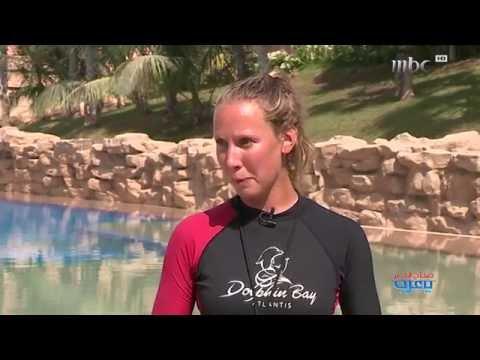 Swim with Dolphins – Atlantis The Palm, Dubai اسبح مع الدلافين في أتلانتس دبي