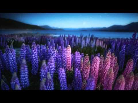 Blurry Lights - Dreamwaves (Full Album)