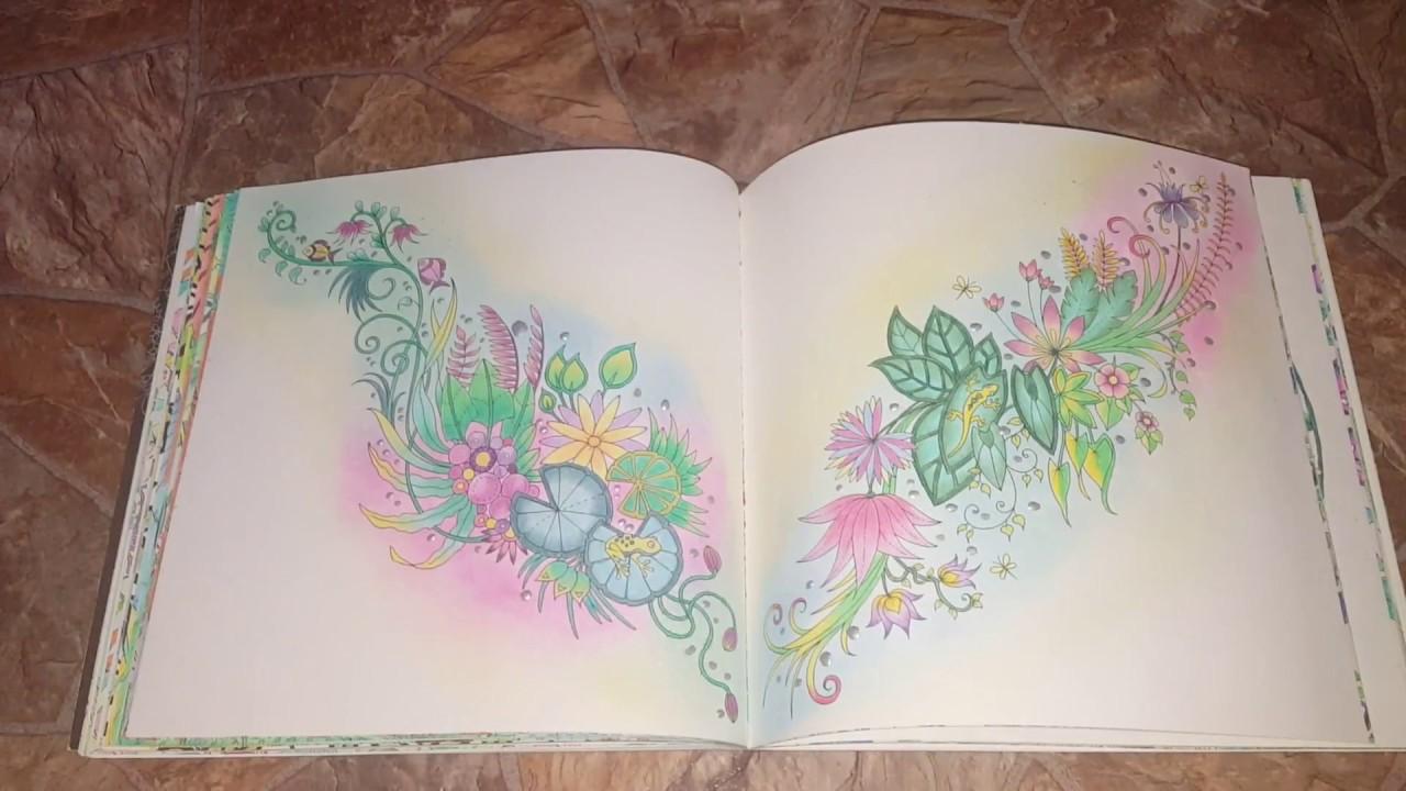 Joanna Basford. Secret Garden Fox | Enchanted forest coloring book ... | 720x1280