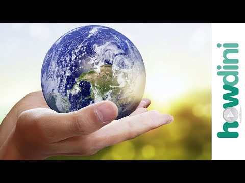 Sustainable Living: 5 Ways to Help Save the Planet