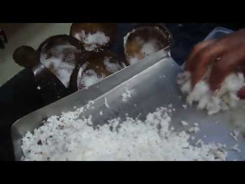 Storing Grated Coconut For 20 Days Without Preservatives | Cooking Tips | Gowri Samayalarai