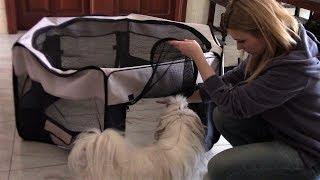 Покупки | Тентовый домашний вольер для щенка