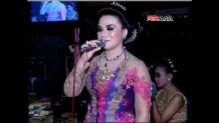 Single Terbaru -  Waru Doyong Koplo Dangdut Live Sragenan