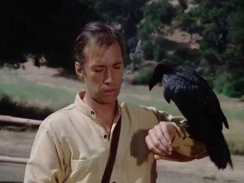 Kung Fu: Caine the Crow Whisperer