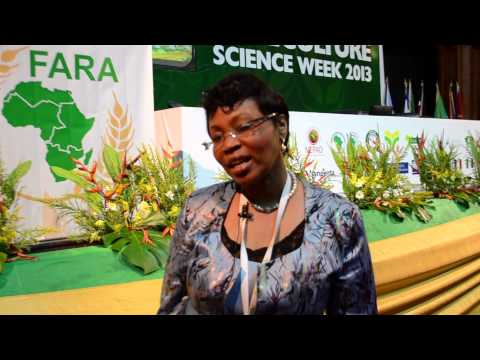 Empower the private sector to invest in Agriculture
