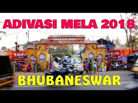 Adivasi Mela Bhubaneswar,Odisha,India 2018