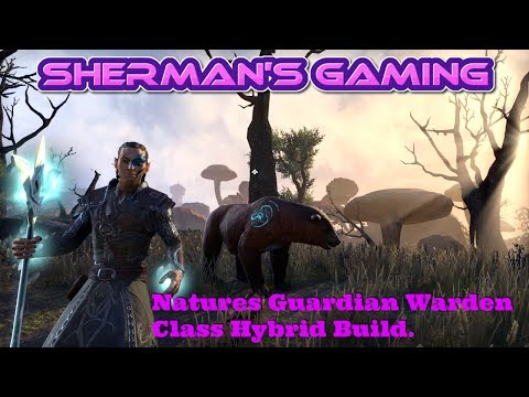 ESO Build Video Natures Guardian Warden Class Hybrid Build.