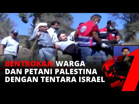 Krisis Palestina-Israel, Warga Dan Petani Zaitun Bentrok Dengan Tentara Israel | TvOne