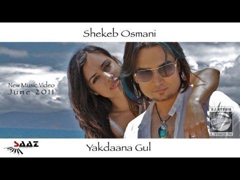 Shekeb Osmani  Yakdaana Gul HD Mast Afghan Music July 2011