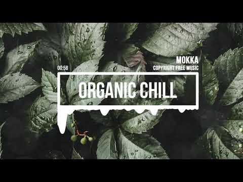 (No Copyright Music) Organic Chill Beat [Chill Music] by MOKKA