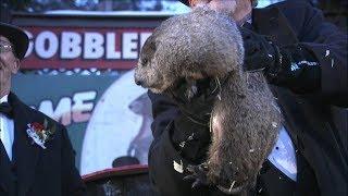 Groundhog Day 2018: Punxsutawney Phil's winter prediction live from Gobbler's Knob | ABC News