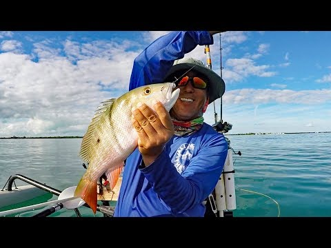 Nuttin' But Muttons - Florida Keys Live Bait Fishing