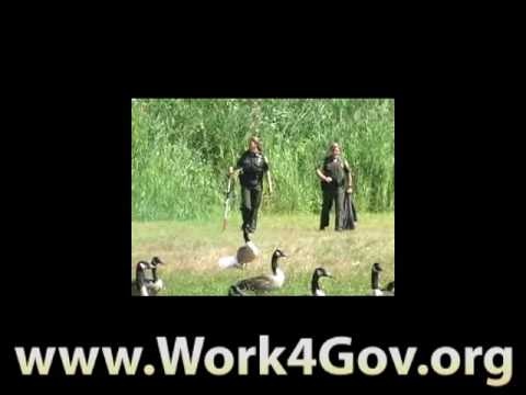 Conservation officer fish and game wardens apply for a for Fish and game jobs