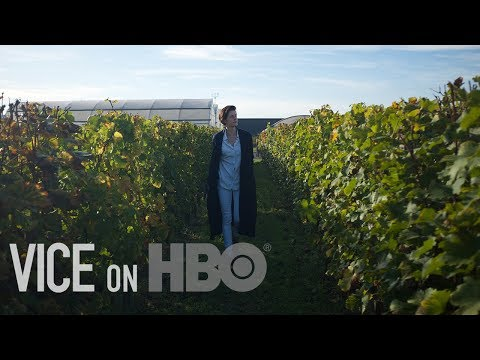 wine article What Wine Can Teach Us About Climate Change VICE on HBO