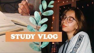 vlog 4|Школа,учеба #StudyVlog||Elizabet Mayer