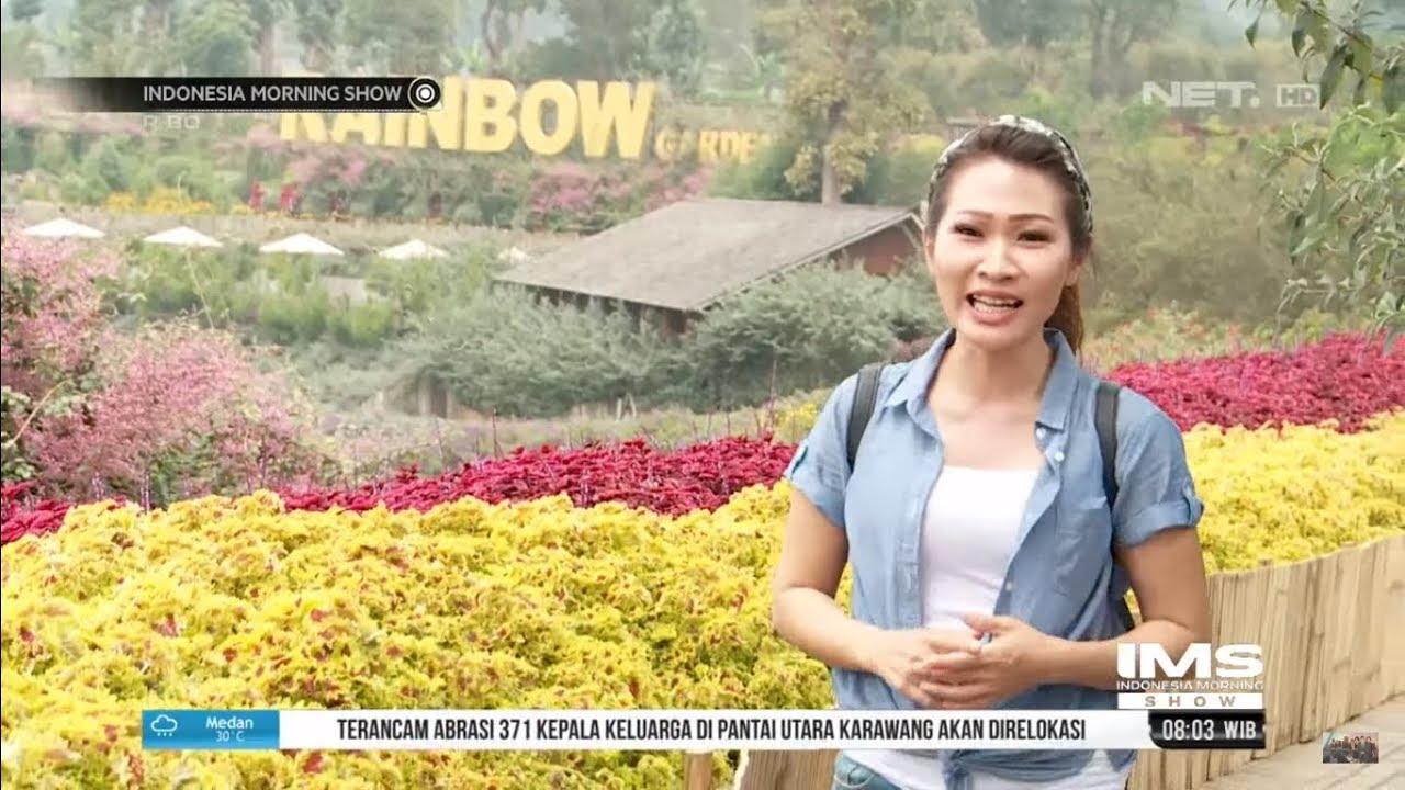 Coba Edible Flower di Wisata Rainbow Garden Lembang - YouTube