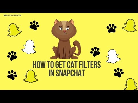 How To Get The Cat Filter On Snapchat
