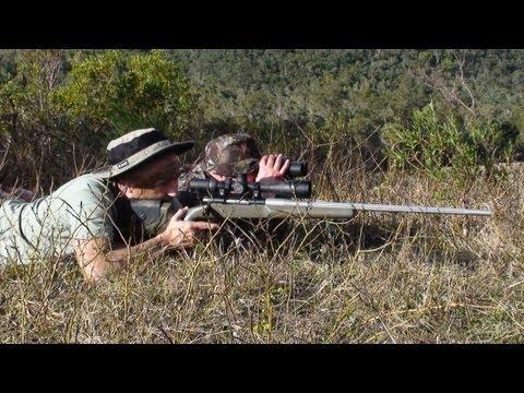 Hunting Rusa deer in New Caledonia part 50