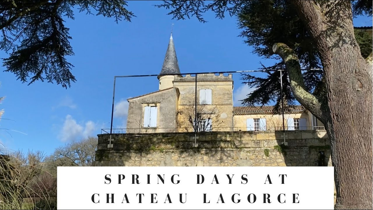 Spring days at Chateau Lagorce, the library, Valentine's surprise and Cookies disaster :)