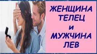 видео Совместимость гороскопов Лев и Телец