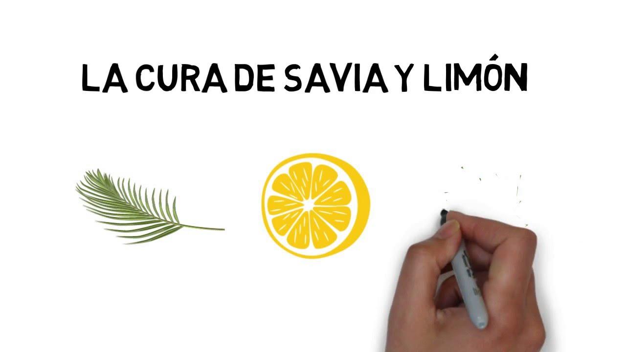 Y limon sirope savia dieta