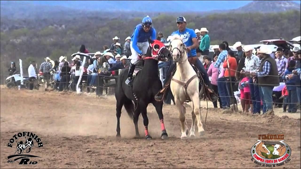 Carreras de caballos en el valle de tacupeto 17 enero 2015 - El valle de los caballos ...