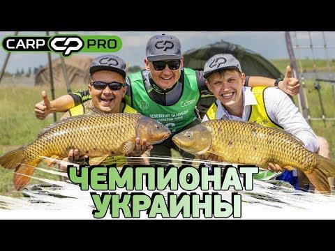 Чемпионат Украины по ловле карпа 2019!