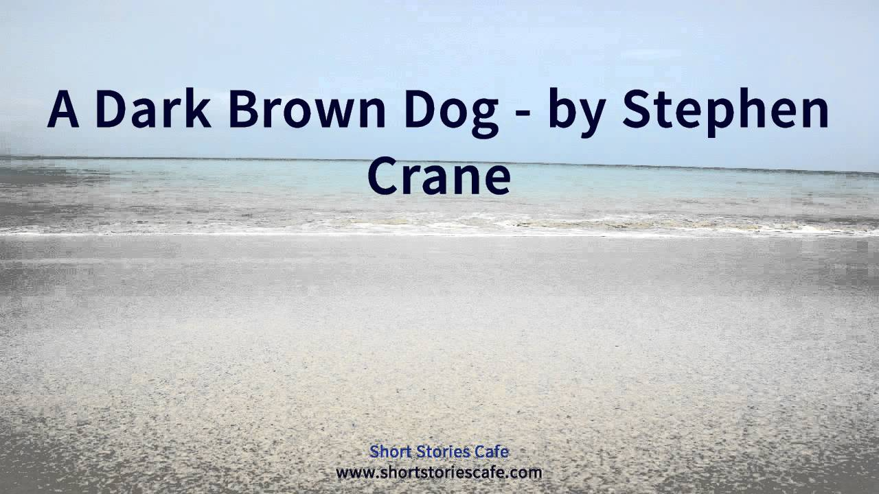 "a dark brown dog setting by stephen crane The dark brown dog by stephan crane real life connections the short story also written by stephen crane, maggie:a girl on the streets relates to ""the dark brown dog"", because it's about a dog how the main character's family are poor and they struggle through their poor life."