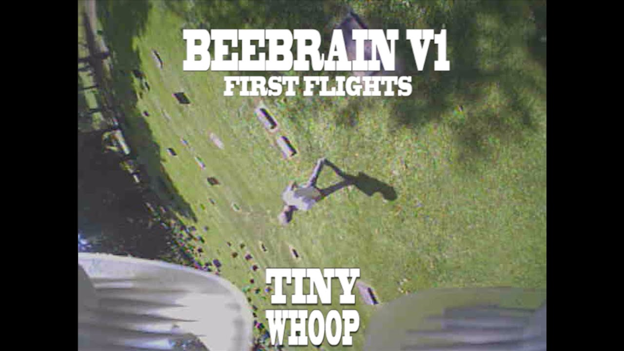 First Flights with the BeeBrain V1- TINY WHOOP A…