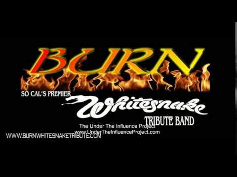 Burn Guitarist Jeff Ellis Los Angeles based Whitesnake Tribute Band   Purple Album Interview