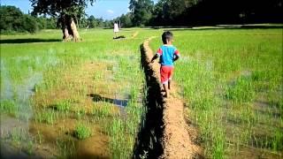 Baluralata Piyabanna Ba Sinhala Kid video songs - Sinhala lama gee සිංහල ළමා ගීත වීඩියෝ
